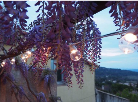 Guirlande guinguette connectable, 20 bulbs transparentes 6m terrasse