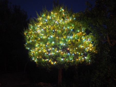 Duocolor - Guirlande lumineuse pour sapin 120 LED blanc chaud et froid